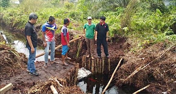 Canalblocking2 Indonesiens Waldbrände: Monsumregen, El Niño und der Kampf der Regierung Energie und Wasser Umwelt