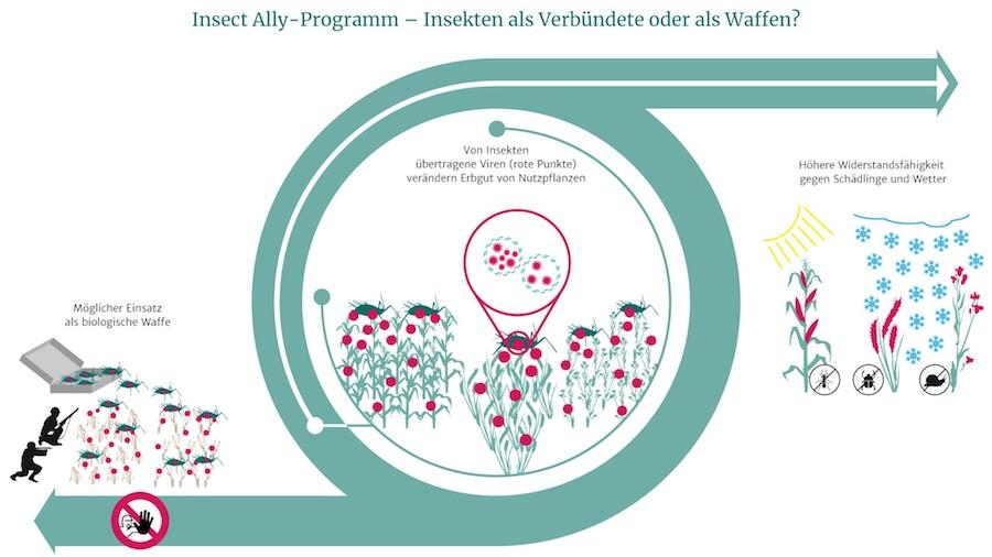 newsimage306862-2 Ein Schritt zu biologischen Waffen durch Insekten? Forschung + Entwicklung