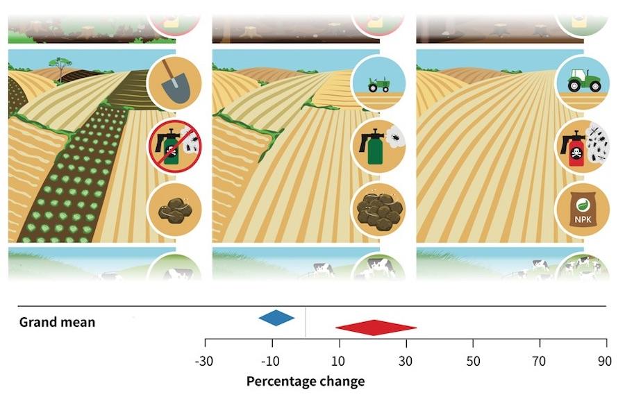 Landnutzung-Faireconomics Wieviel Natur wir durch höhere Erträge verlieren Landwirtschaft
