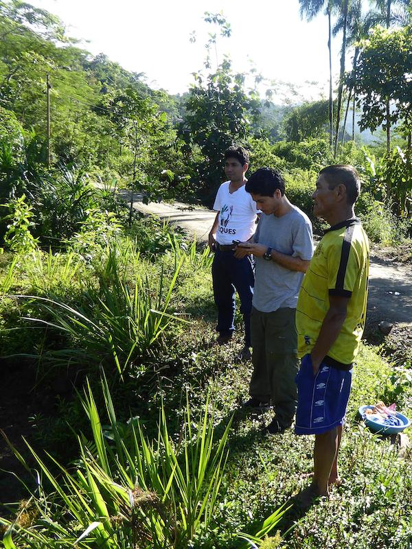 newsimage313493 Warum der Tropenwaldschutz in Peru wirksamer werden muss. Klima
