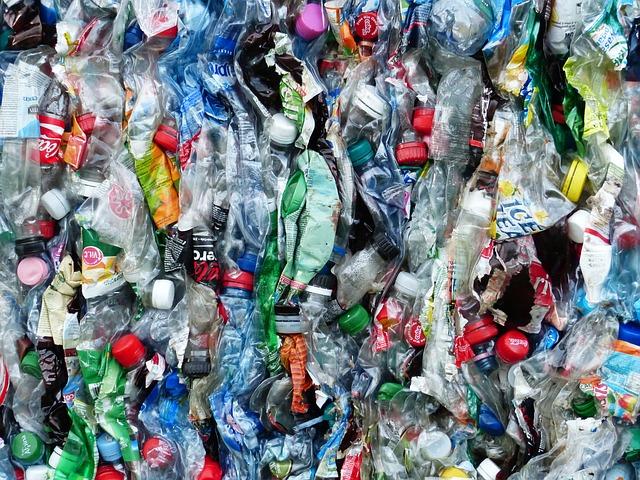 plastic-bottles-115071_640 FAIReconomicsNewsletter KW19/19 NACHRICHTEN: AKK gegen CO2 Steuer, Schulze gegen Plastikabfall-Export, Konstanz: Klimanotstand, guter oder schlechter Onlinehandel, WWF und Menschenrechte, Elefantenrunde in Afrika Newsletter