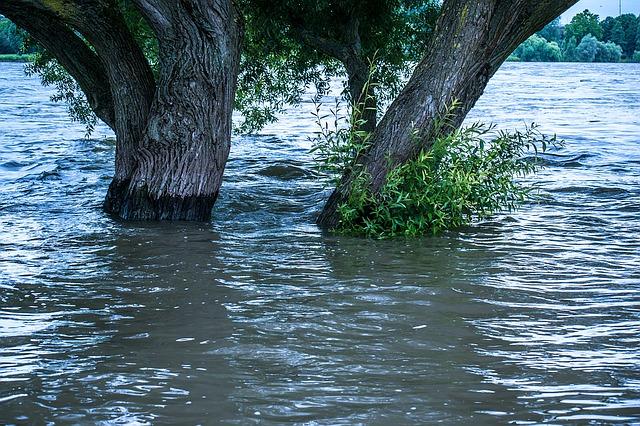 high-water-1519088_640 FAIReconomicsNewsletter KW 36NACHRICHTEN: Kohleausstiegsförderung - umstritten, Artenschutz - Fortschritte, Nitratbelastung - Strafzahlung, WLPT-Test - in Kraft,  Neues aus dem Bundestag Newsletter