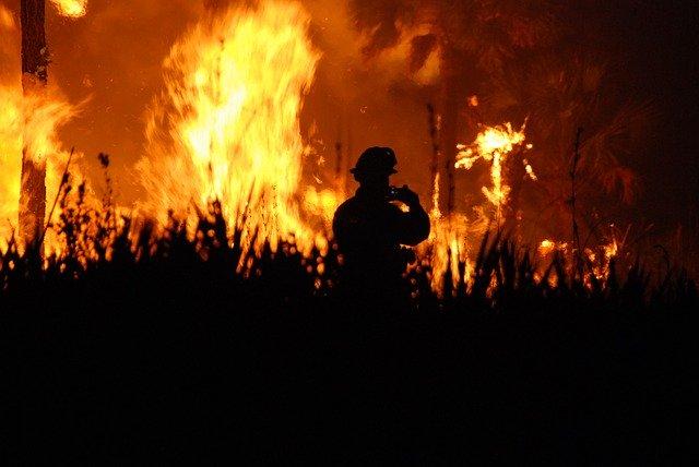 fire-2625054_640 FAIReconomicsNewsletter Week 02/20 english version Newsletter